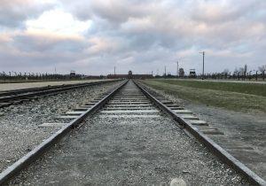 Il binario che attraversa il campo di Birkenau