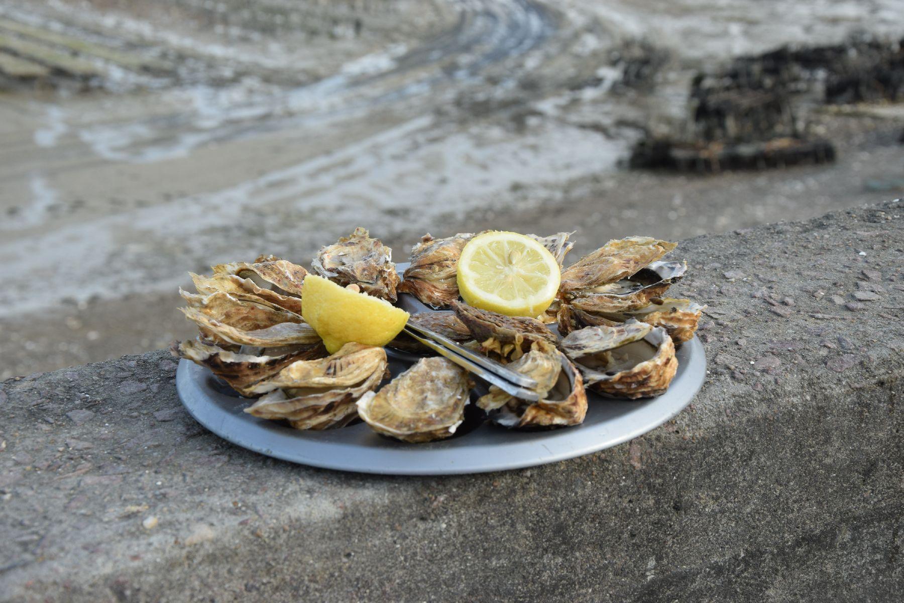 Plateau di ostriche al porto di Cancale