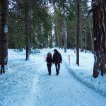 Passeggiando nei boschi di Pontresina