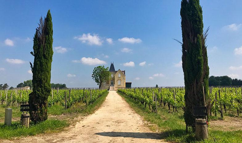 Visitare Saint Émilion e gli Châteaux